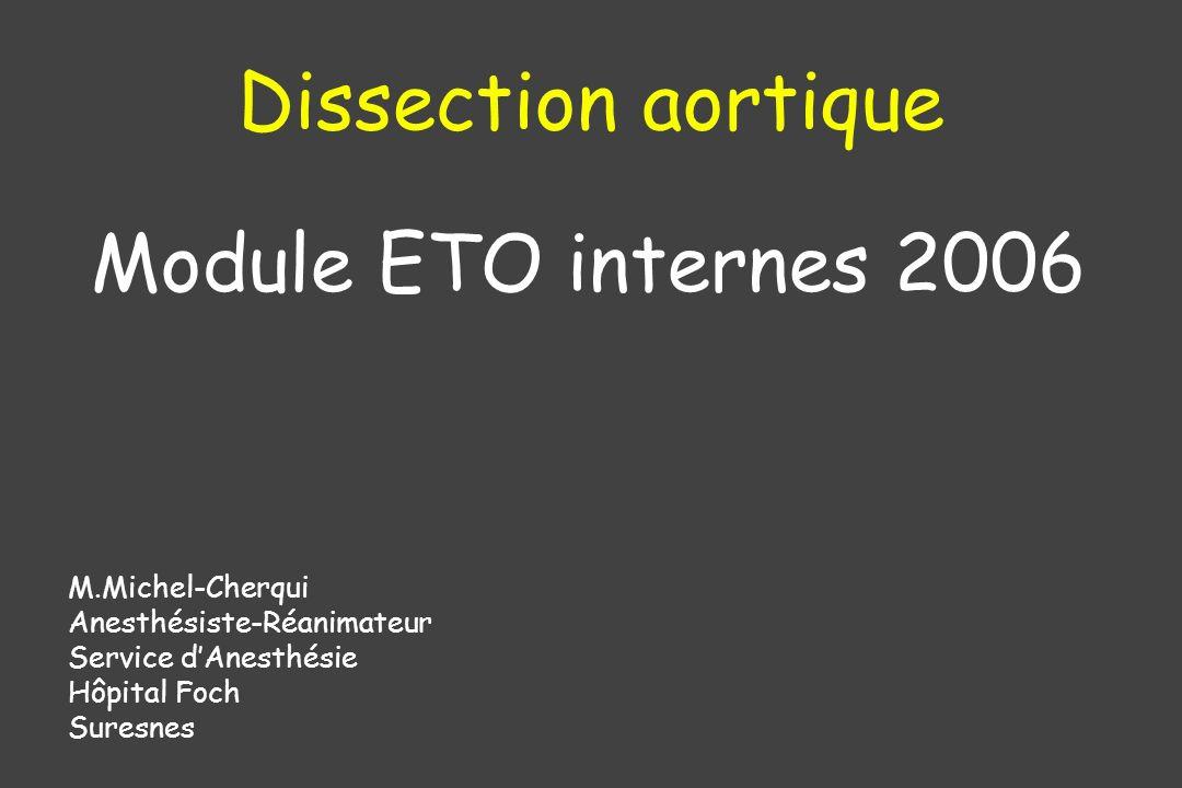 Dissection aortique Module ETO internes 2006 M.Michel-Cherqui Anesthésiste-Réanimateur Service dAnesthésie Hôpital Foch Suresnes