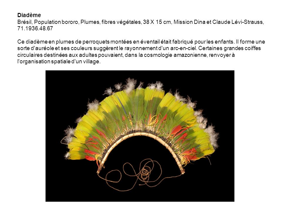 Diadème Brésil, Population bororo, Plumes, fibres végétales, 38 X 15 cm, Mission Dina et Claude Lévi-Strauss, 71.1936.48.67 Ce diadème en plumes de pe