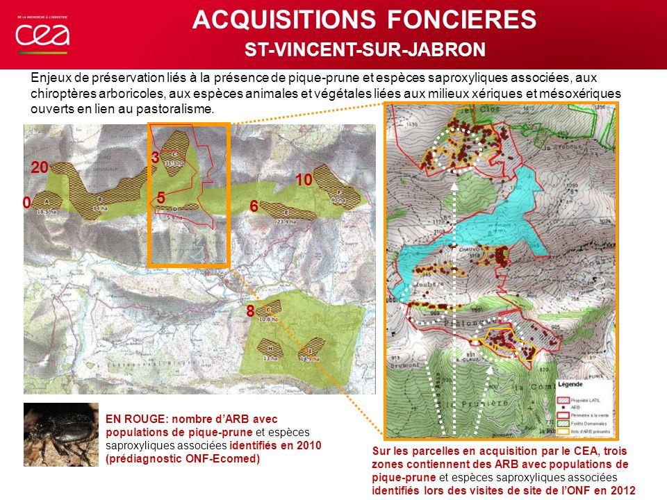0 20 3 5 6 10 8 Sur les parcelles en acquisition par le CEA, trois zones contiennent des ARB avec populations de pique-prune et espèces saproxyliques