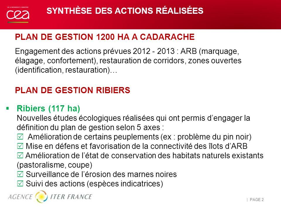 SYNTHÈSE DES ACTIONS RÉALISÉES 26 AVRIL 2014 | PAGE 2 Pour personnaliser le pied de page et la date : « Insertion / En-tête et pied de page » Personna
