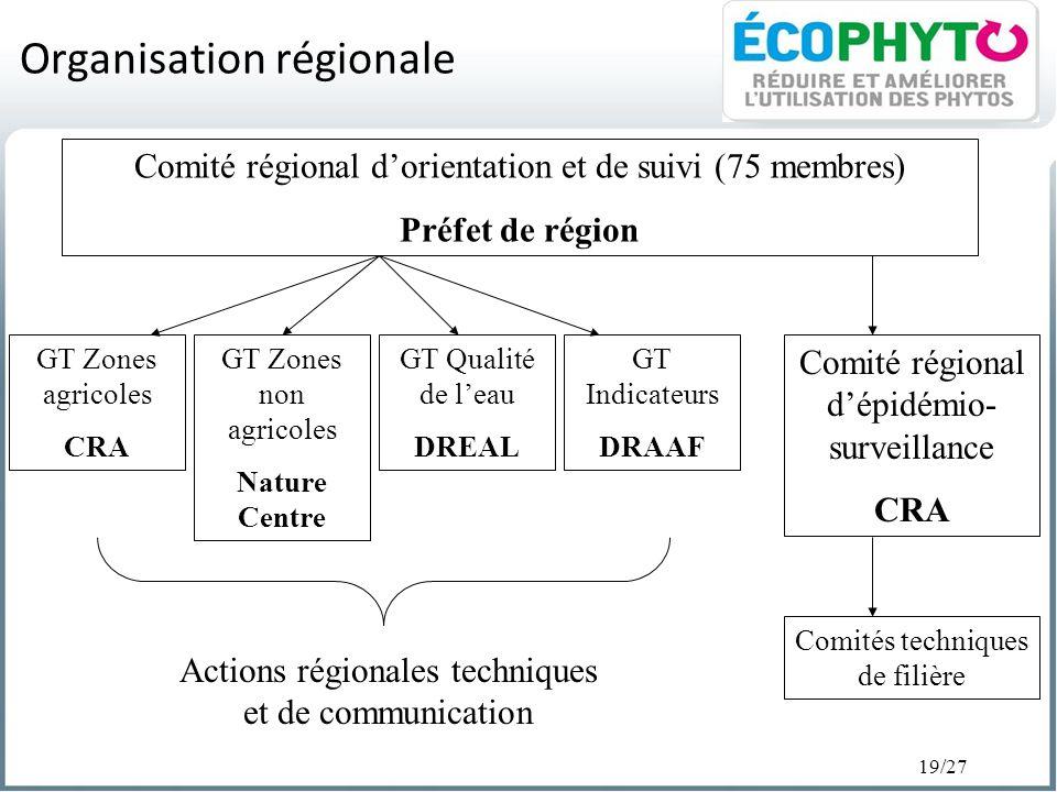 19/27 Organisation régionale Comité régional dorientation et de suivi (75 membres) Préfet de région GT Zones agricoles CRA Comité régional dépidémio-