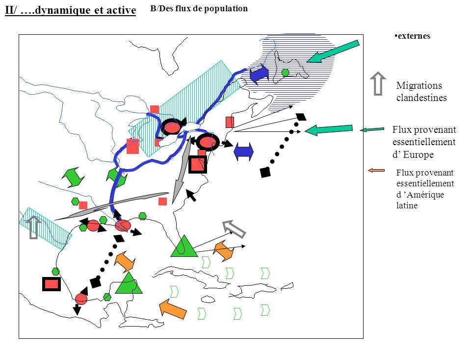Migrations clandestines Flux provenant essentiellement d Europe Flux provenant essentiellement d Amérique latine II/ ….dynamique et active B/Des flux