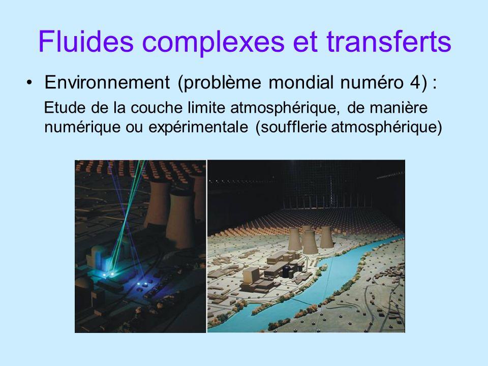 Fluides complexes et transferts Environnement (problème mondial numéro 4) : Etude de la couche limite atmosphérique, de manière numérique ou expérimentale (soufflerie atmosphérique)