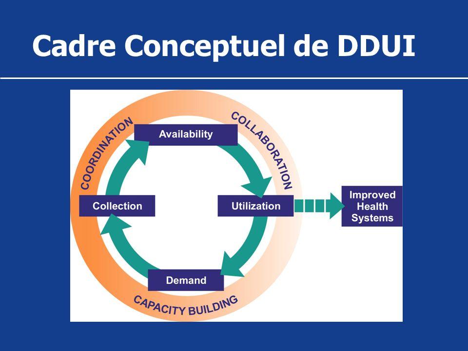 Le processus de DDUI 5 grandes étapes: Identification du problème; Evaluation de la situation (demande et offre); Identification des opportunités stratégiques (circuit de linformation, parties prenantes); Elaboration dune stratégie; Application et évaluation de la stratégie.