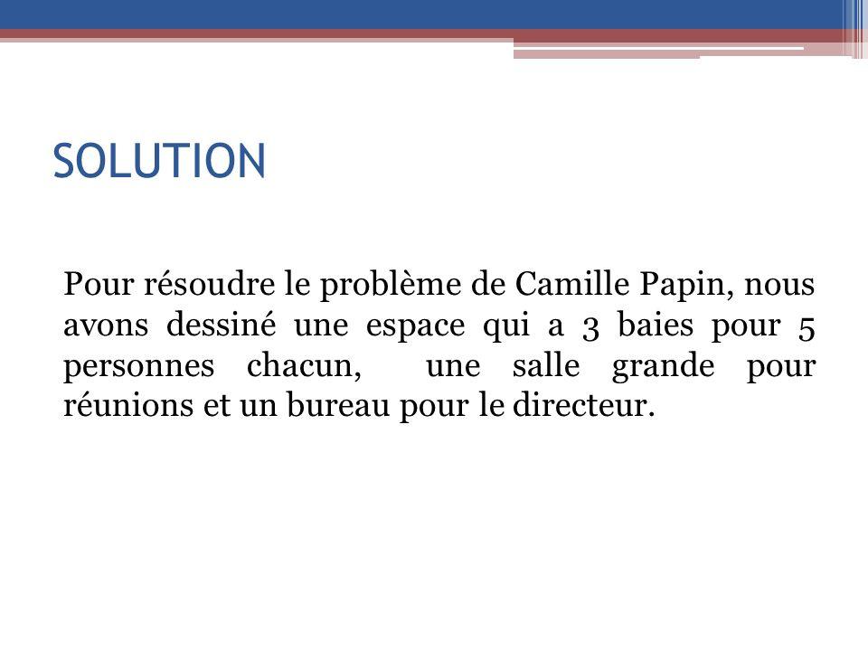 SOLUTION Pour résoudre le problème de Camille Papin, nous avons dessiné une espace qui a 3 baies pour 5 personnes chacun, une salle grande pour réunio