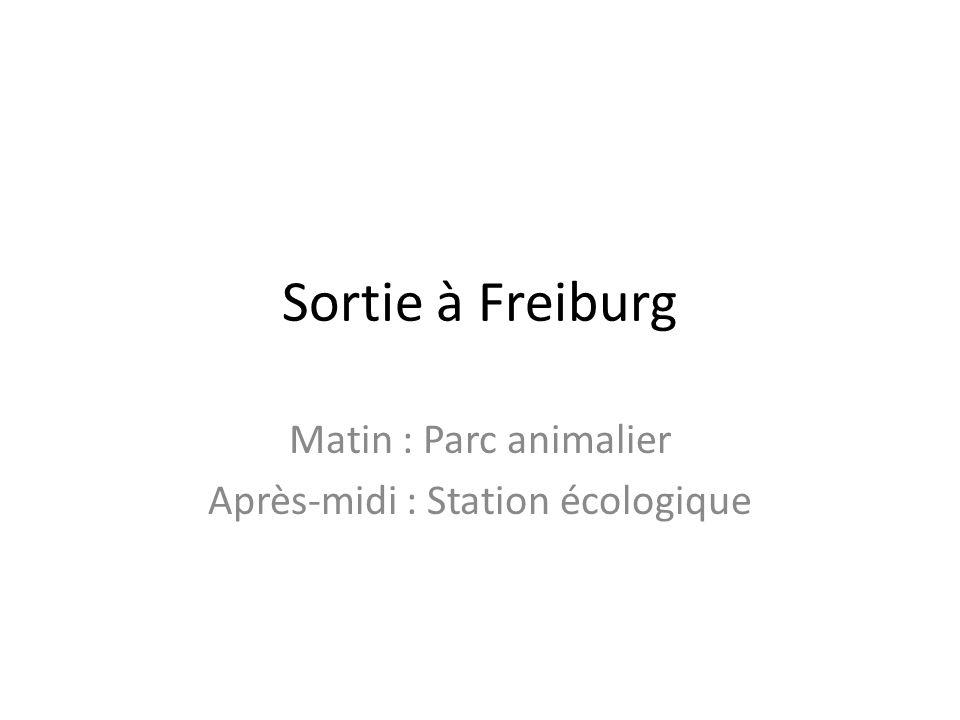 Sortie à Freiburg Matin : Parc animalier Après-midi : Station écologique