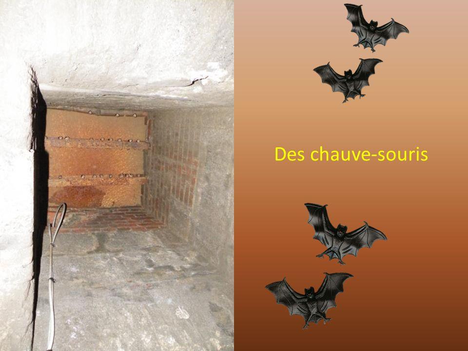 Bouhouuuuu