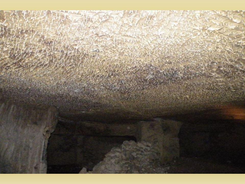 Les stalactites 1cm = 100 ans