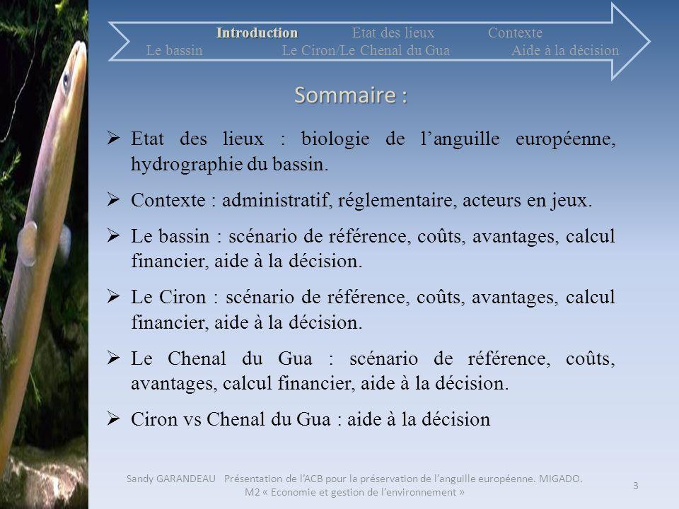 Sommaire : Etat des lieux : biologie de languille européenne, hydrographie du bassin. Contexte : administratif, réglementaire, acteurs en jeux. Le bas