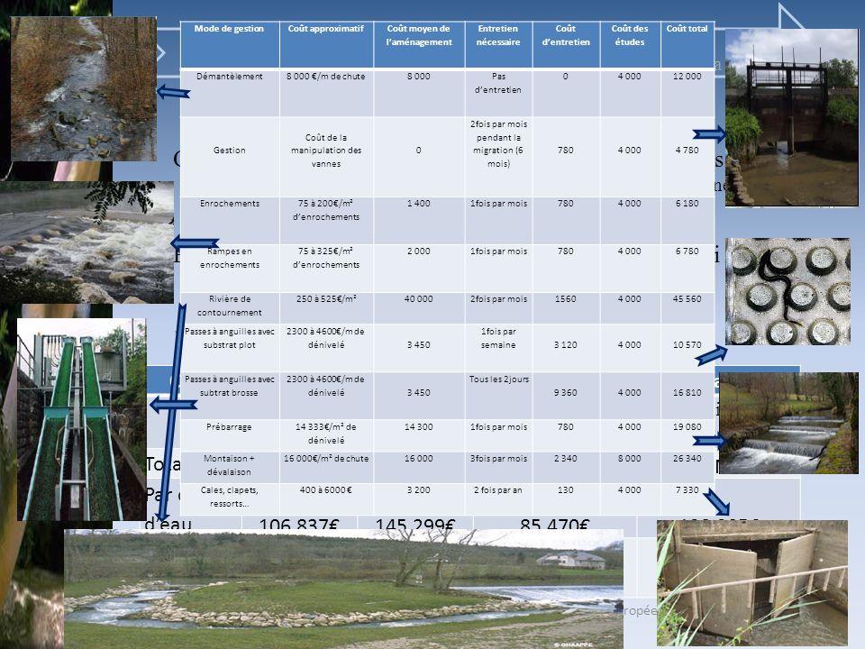 Sandy GARANDEAU Présentation de lACB pour la préservation de languille européenne. MIGADO. M2 « Economie et gestion de lenvironnement » IntroductionEt