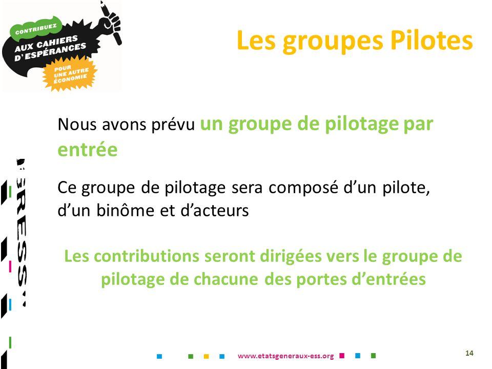 www.etatsgeneraux-ess.org Nous avons prévu un groupe de pilotage par entrée Ce groupe de pilotage sera composé dun pilote, dun binôme et dacteurs Les contributions seront dirigées vers le groupe de pilotage de chacune des portes dentrées Les groupes Pilotes 14