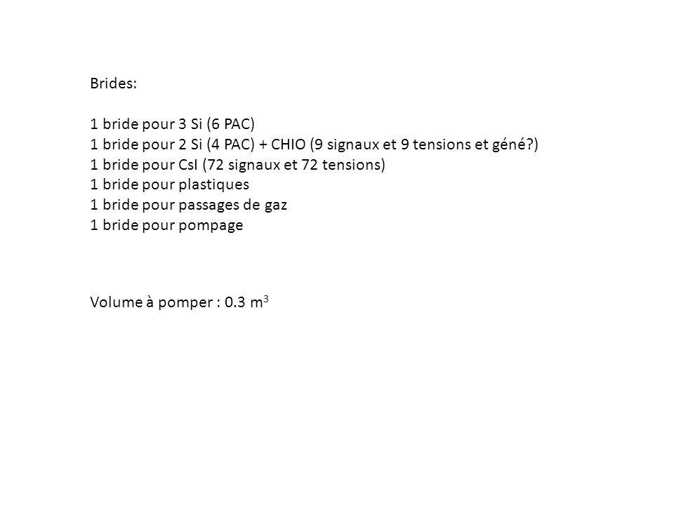 Brides: 1 bride pour 3 Si (6 PAC) 1 bride pour 2 Si (4 PAC) + CHIO (9 signaux et 9 tensions et géné ) 1 bride pour CsI (72 signaux et 72 tensions) 1 bride pour plastiques 1 bride pour passages de gaz 1 bride pour pompage Volume à pomper : 0.3 m 3