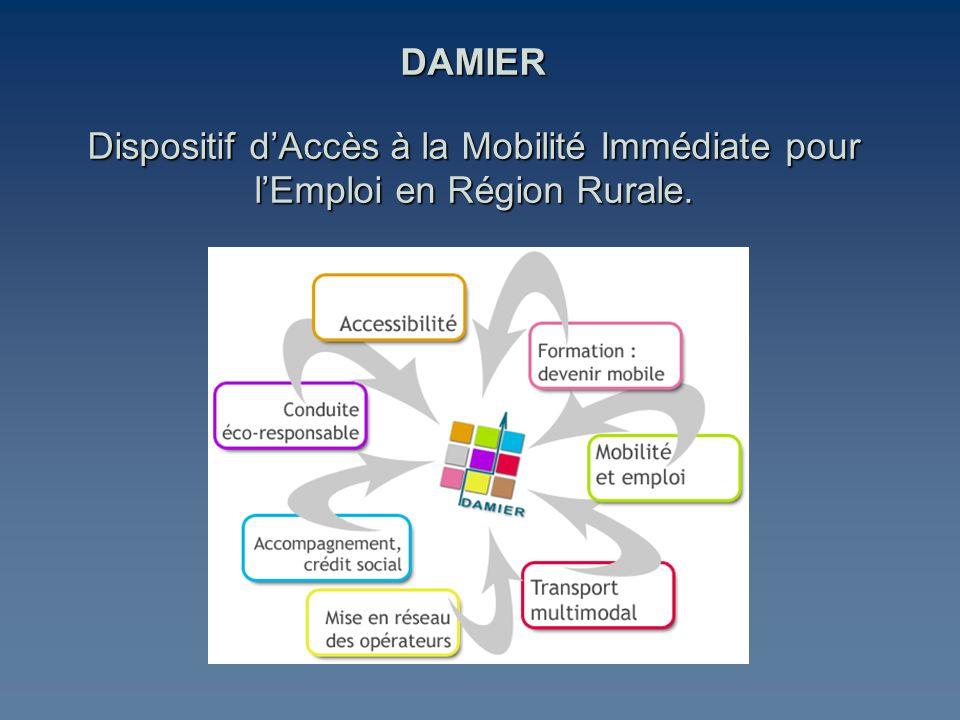 DAMIER Dispositif dAccès à la Mobilité Immédiate pour lEmploi en Région Rurale.