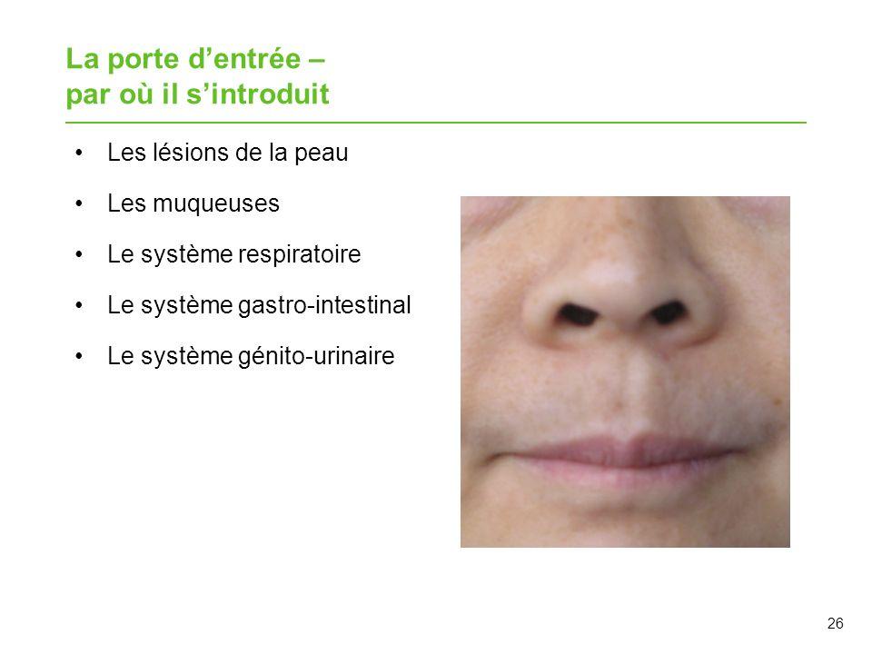 26 La porte dentrée – par où il sintroduit Les lésions de la peau Les muqueuses Le système respiratoire Le système gastro-intestinal Le système génito