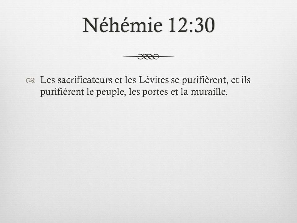 Néhémie 12:30Néhémie 12:30 Les sacrificateurs et les Lévites se purifièrent, et ils purifièrent le peuple, les portes et la muraille.