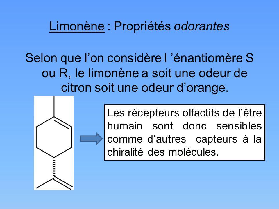 Limonène : Propriétés odorantes Selon que lon considère l énantiomère S ou R, le limonène a soit une odeur de citron soit une odeur dorange. Les récep