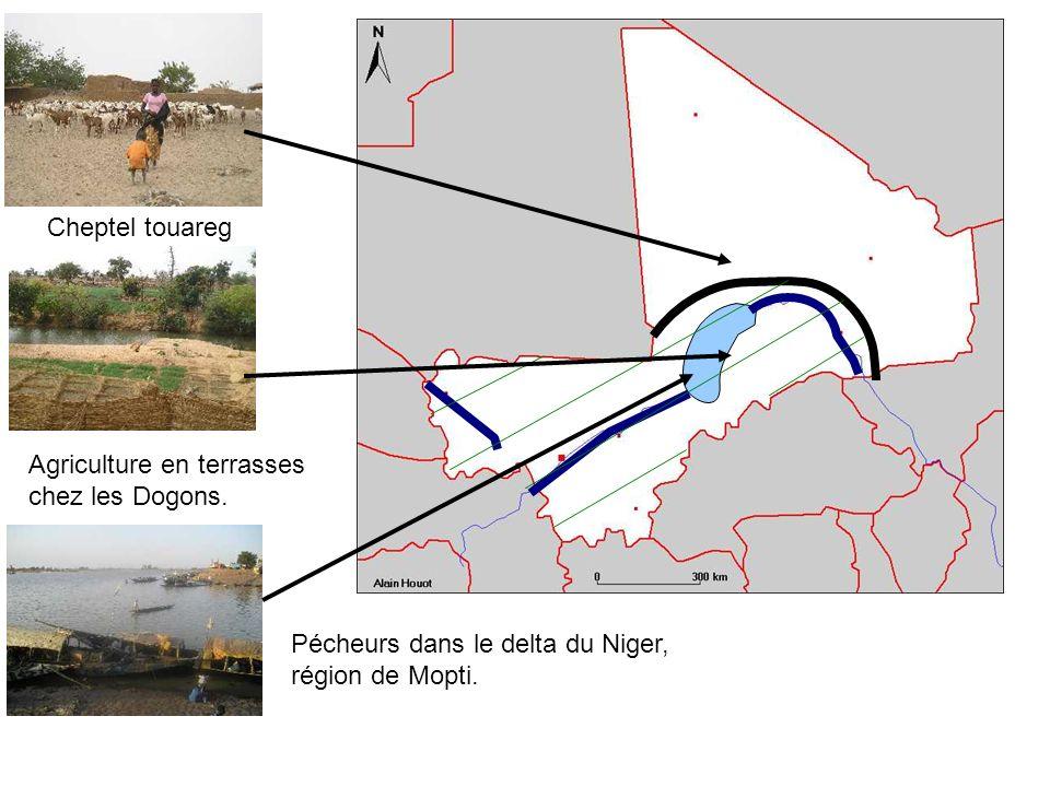 Pécheurs dans le delta du Niger, région de Mopti. Agriculture en terrasses chez les Dogons. Cheptel touareg
