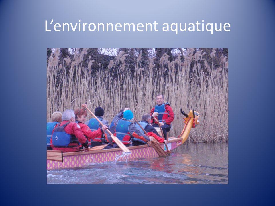 Lenvironnement aquatique