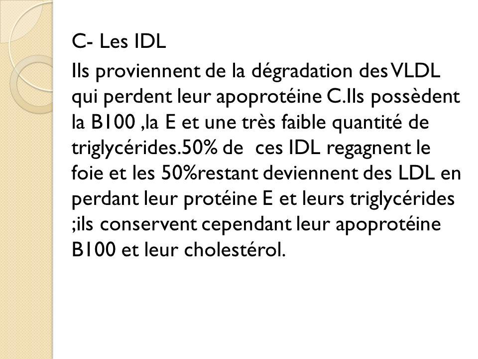 C- Les IDL Ils proviennent de la dégradation des VLDL qui perdent leur apoprotéine C.Ils possèdent la B100,la E et une très faible quantité de triglycérides.50% de ces IDL regagnent le foie et les 50%restant deviennent des LDL en perdant leur protéine E et leurs triglycérides ;ils conservent cependant leur apoprotéine B100 et leur cholestérol.
