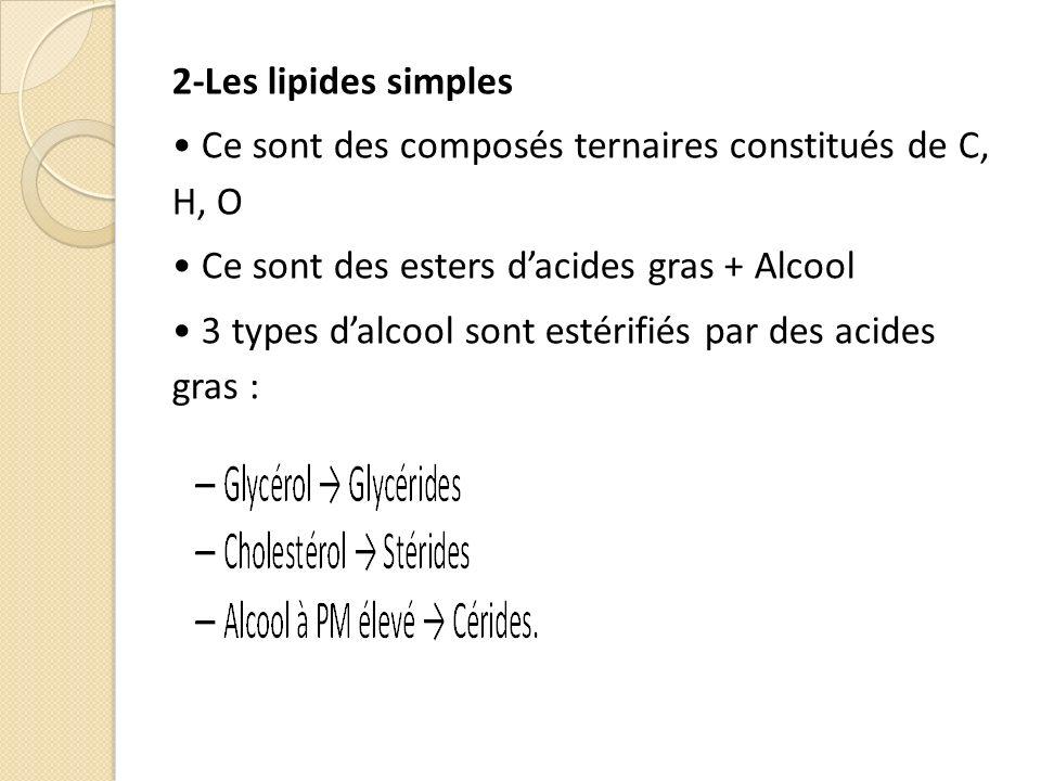 2-Les lipides simples Ce sont des composés ternaires constitués de C, H, O Ce sont des esters dacides gras + Alcool 3 types dalcool sont estérifiés par des acides gras :