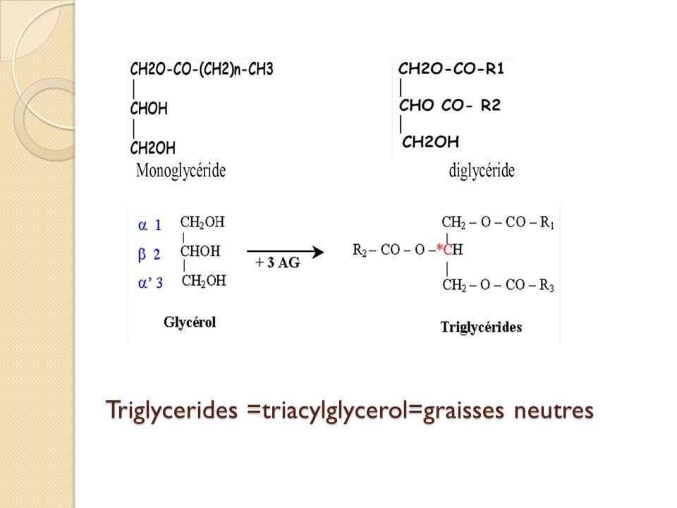 Triglycerides =triacylglycerol=graisses neutres