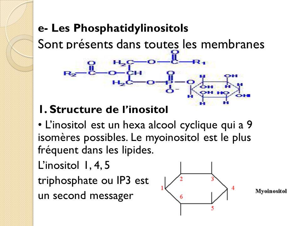 e- Les Phosphatidylinositols Sont présents dans toutes les membranes 1.