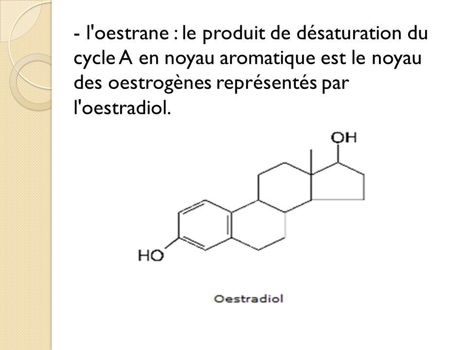 - l oestrane : le produit de désaturation du cycle A en noyau aromatique est le noyau des oestrogènes représentés par l oestradiol.