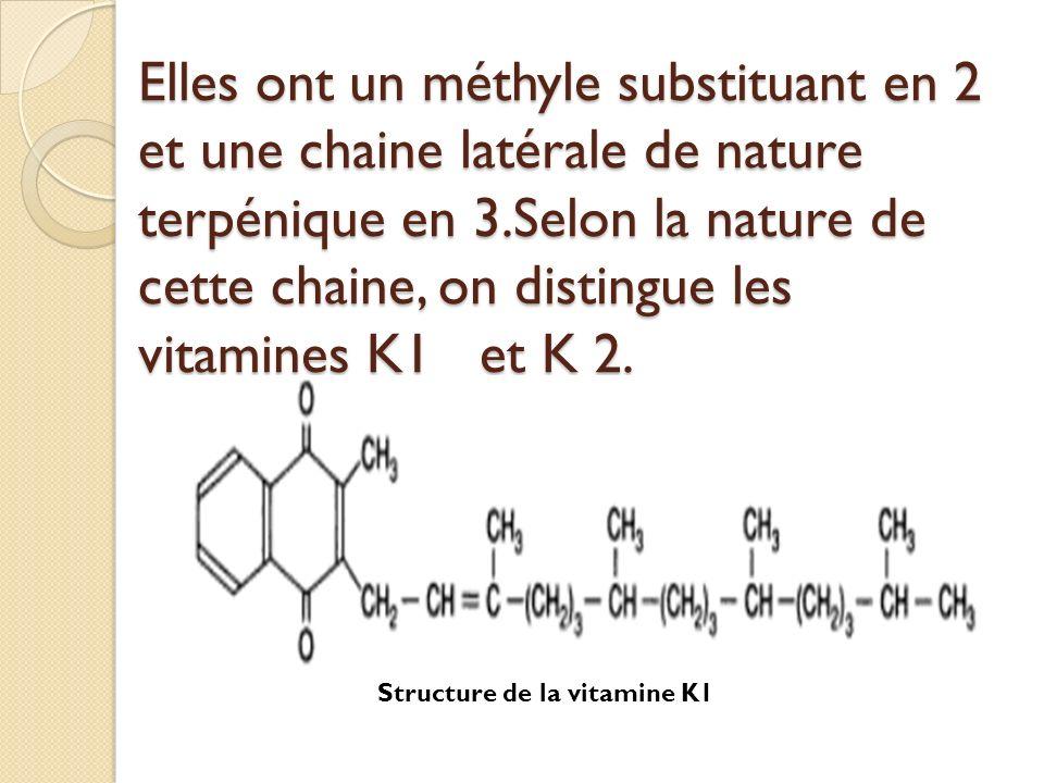 Elles ont un méthyle substituant en 2 et une chaine latérale de nature terpénique en 3.Selon la nature de cette chaine, on distingue les vitamines K1 et K 2.