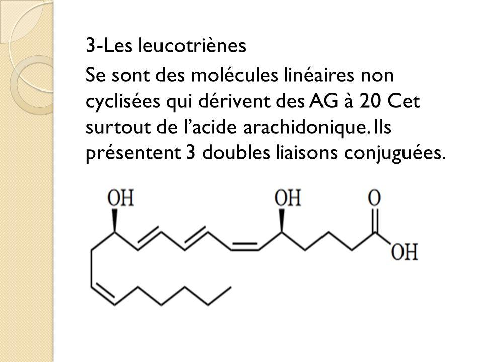 3-Les leucotriènes Se sont des molécules linéaires non cyclisées qui dérivent des AG à 20 Cet surtout de lacide arachidonique.