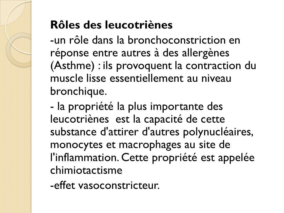 Rôles des leucotriènes -un rôle dans la bronchoconstriction en réponse entre autres à des allergènes (Asthme) : ils provoquent la contraction du muscle lisse essentiellement au niveau bronchique.
