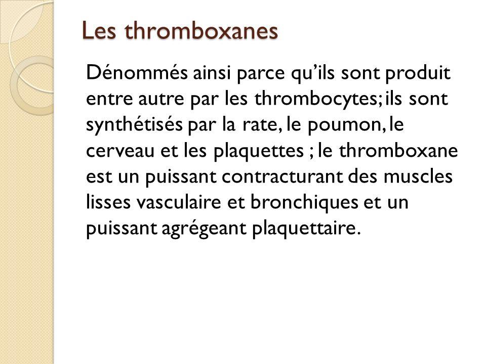Les thromboxanes Dénommés ainsi parce quils sont produit entre autre par les thrombocytes; ils sont synthétisés par la rate, le poumon, le cerveau et les plaquettes ; le thromboxane est un puissant contracturant des muscles lisses vasculaire et bronchiques et un puissant agrégeant plaquettaire.