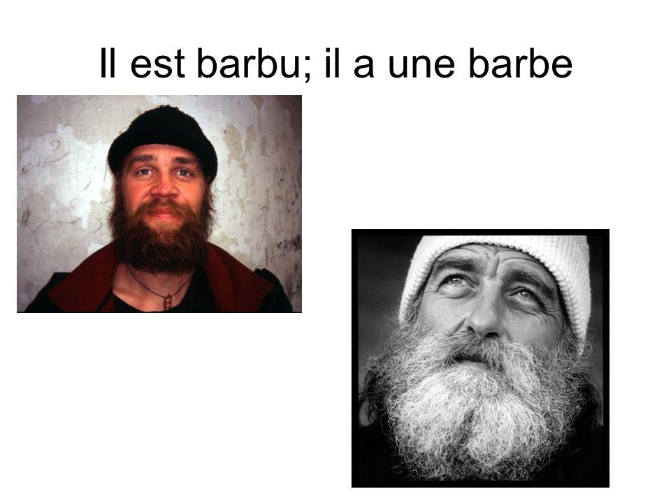 Il est barbu; il a une barbe