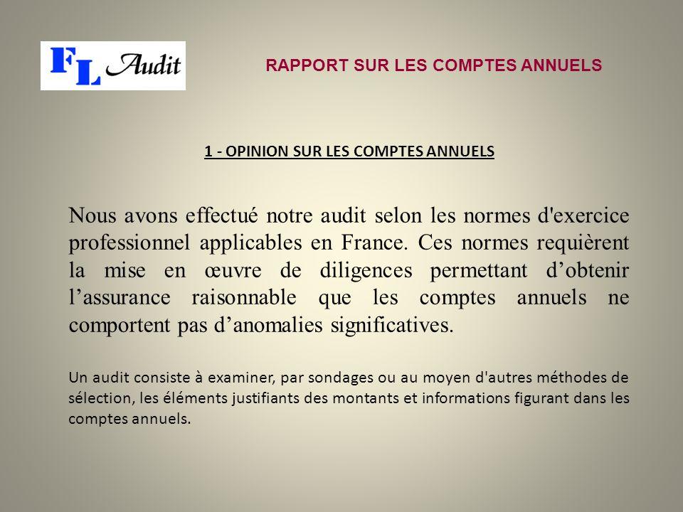 Nous avons effectué notre audit selon les normes d'exercice professionnel applicables en France. Ces normes requièrent la mise en œuvre de diligences
