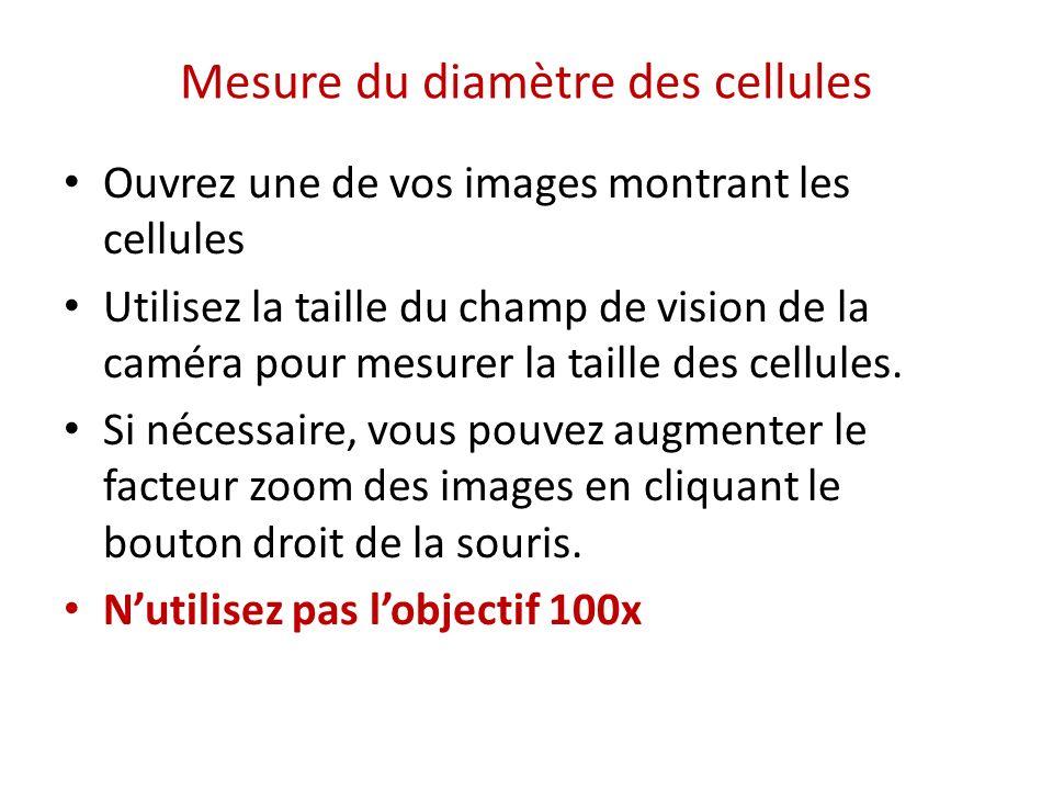 Mesure du diamètre des cellules Ouvrez une de vos images montrant les cellules Utilisez la taille du champ de vision de la caméra pour mesurer la tail