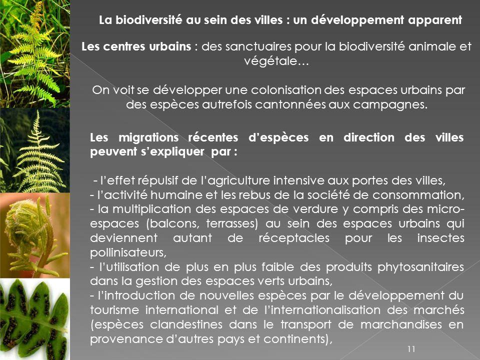 La biodiversité au sein des villes : un développement apparent Les centres urbains : des sanctuaires pour la biodiversité animale et végétale… On voit