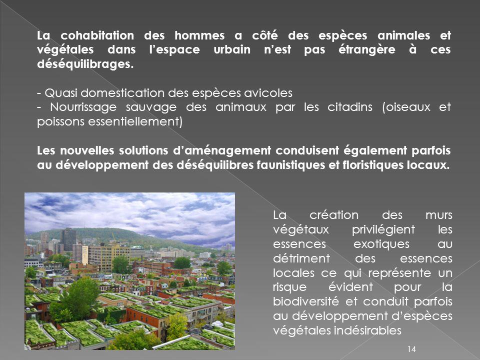 La cohabitation des hommes a côté des espèces animales et végétales dans lespace urbain nest pas étrangère à ces déséquilibrages. - Quasi domesticatio