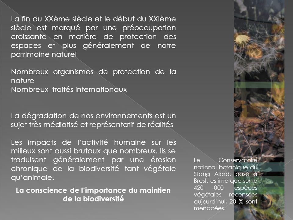 Si les actions politiques ont été initiées depuis le début des années 1990, tant au niveau global quà léchelle des pays, les problèmes subsistent et laffaiblissement de la biodiversité se poursuit Mai 2006la commission européenne lance un plandactions pour enrayer la perte de la biodiversité en Europe Année 2010 Décrétée lannée internationale de la biodiversité.