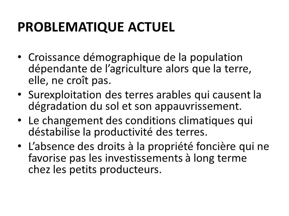 PROBLEMATIQUE ACTUEL Croissance démographique de la population dépendante de lagriculture alors que la terre, elle, ne croît pas.
