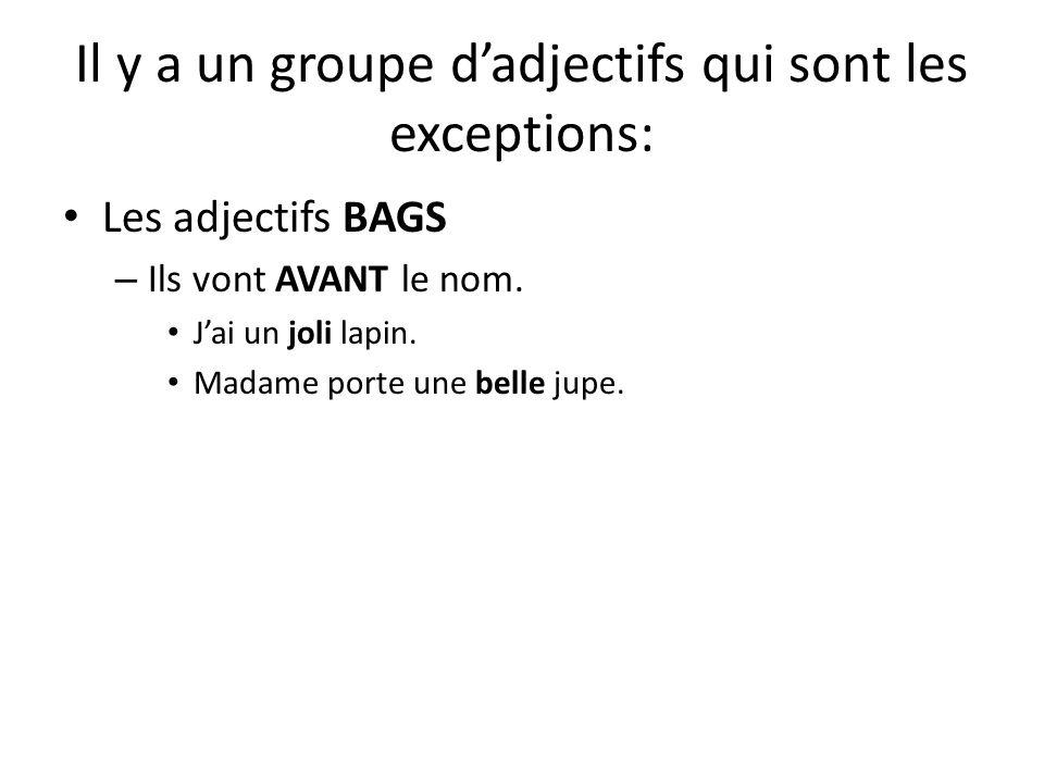 Il y a un groupe dadjectifs qui sont les exceptions: Les adjectifs BAGS – Ils vont AVANT le nom. Jai un joli lapin. Madame porte une belle jupe.