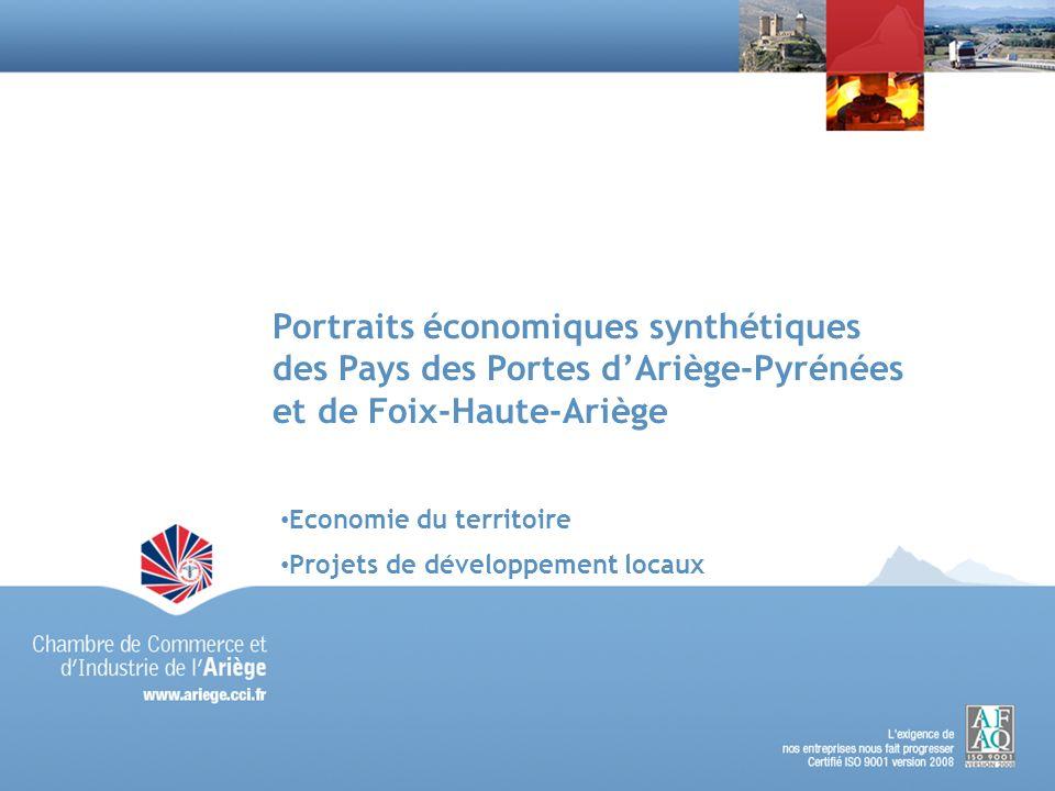 Portraits économiques synthétiques des Pays des Portes dAriège-Pyrénées et de Foix-Haute-Ariège Economie du territoire Projets de développement locaux