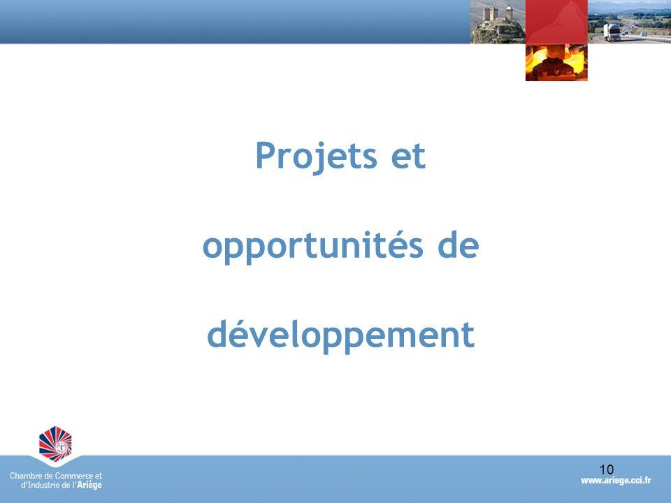 Portraits économiques synthétiques des Pays des Portes dAriège-Pyrénées et de Foix-Haute-Ariège - avril 201010 Projets et opportunités de développemen