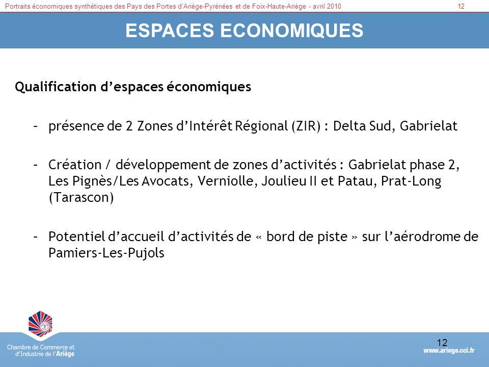 Portraits économiques synthétiques des Pays des Portes dAriège-Pyrénées et de Foix-Haute-Ariège - avril 201012 ESPACES ECONOMIQUES Qualification despa