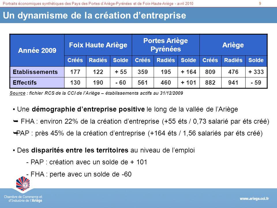 Portraits économiques synthétiques des Pays des Portes dAriège-Pyrénées et de Foix-Haute-Ariège - avril 201010 Projets et opportunités de développement