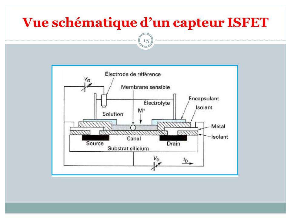 Vue schématique dun capteur ISFET 15