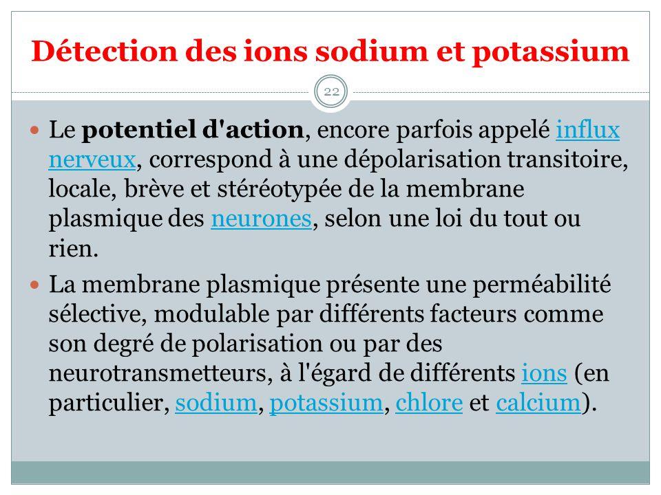Détection des ions sodium et potassium 22 Le potentiel d'action, encore parfois appelé influx nerveux, correspond à une dépolarisation transitoire, lo