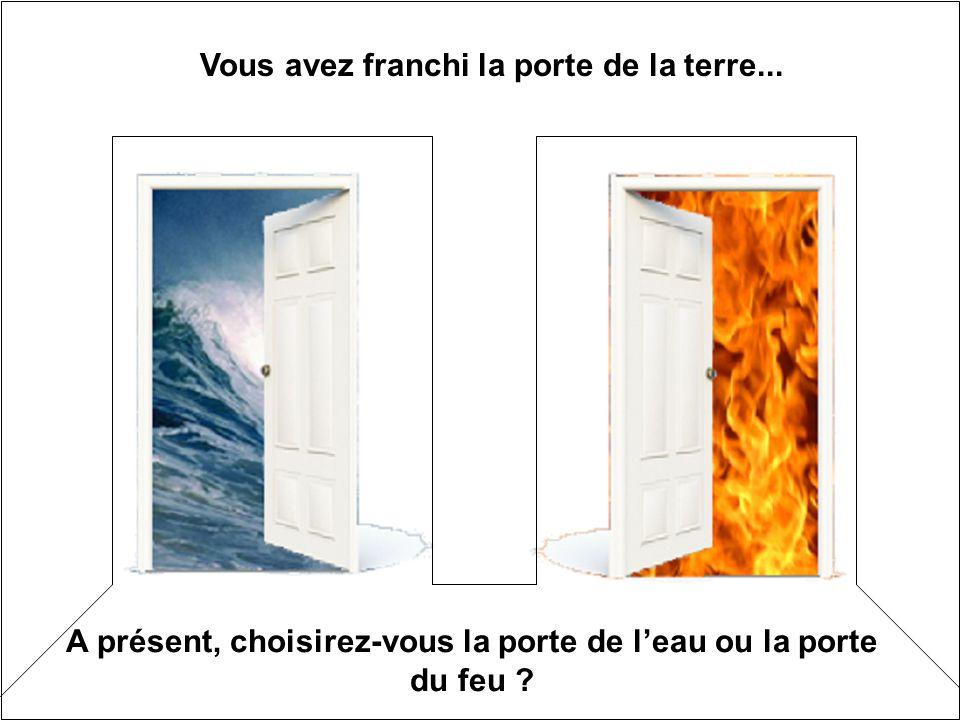 Vous avez franchi la porte de la terre... A présent, choisirez-vous la porte de leau ou la porte du feu ?