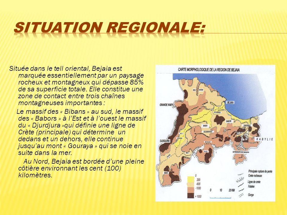 Située dans le tell oriental, Bejaia est marquée essentiellement par un paysage rocheux et montagneux qui dépasse 85% de sa superficie totale. Elle co