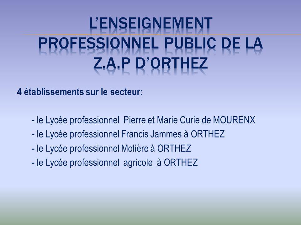 4 établissements sur le secteur: - le Lycée professionnel Pierre et Marie Curie de MOURENX - le Lycée professionnel Francis Jammes à ORTHEZ - le Lycée