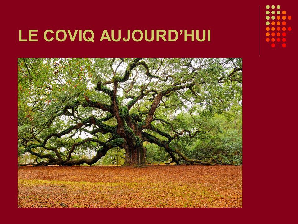LE COVIQ AUJOURDHUI