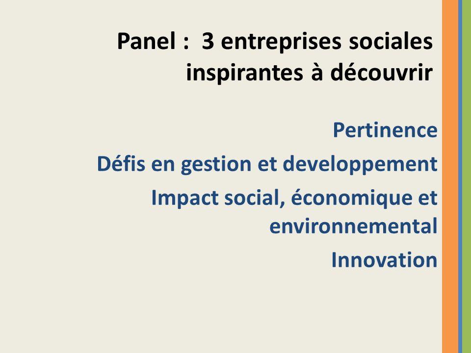 Pertinence Défis en gestion et developpement Impact social, économique et environnemental Innovation Panel : 3 entreprises sociales inspirantes à déco